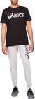 spodnie ASICS Big logo sweat pant męskie 2031A977-021 (3)